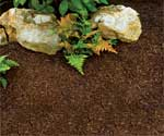 Shredded Rubber Mulch for landscaping