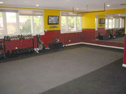 MMA Floor Mats - Workout Flooring