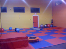 Eva Foam Exercise Flooring Thick Interlocking Foam Mats