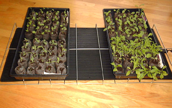 Plant Growing And Seed Warming Mat