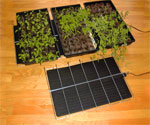 Seed Warming Mat - Plant Heater