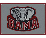 College Logo Mats & College Rugs