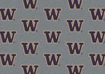 University of Washington Rug