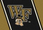 Wake Forest University Rug