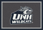 Univ of New Hampshire Rug