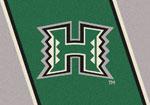 University of Hawaii Rug