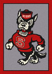 North Carolina State Univ Mat