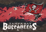 Tampa Bay Buccaneers Area Rug