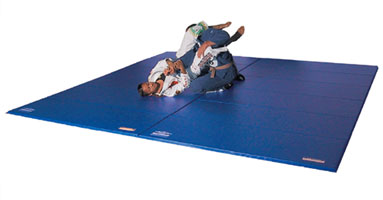 Professional Bi Layer Martial Arts Mat