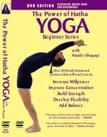 hatha yoga videos