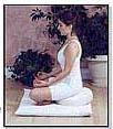 Meditation Cushions (Zafu Pillow and Zabuton Mat)