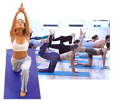 Studio Yoga Mats - Shrink Wrapped